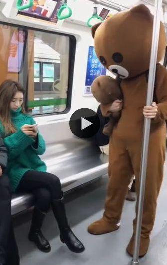 o ursinho engana a mulher