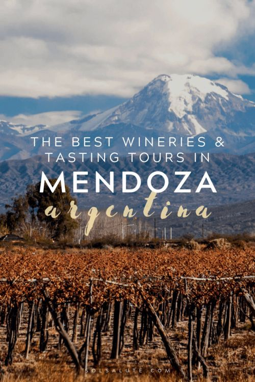 The Best Wineries In Mendoza A Guide To Wine Tasting In Mendoza