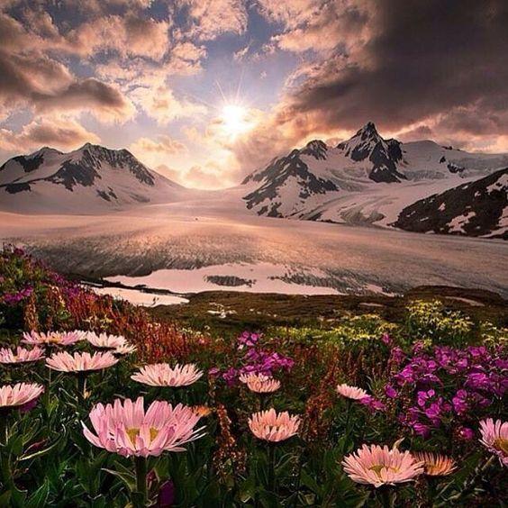 Alaska's Boundary Range