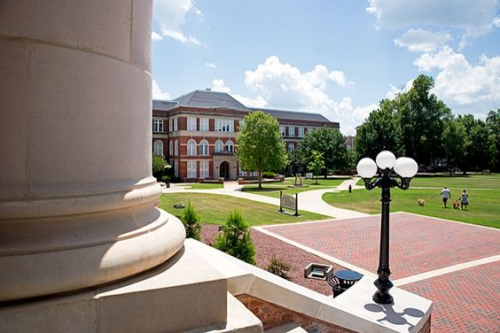 McCain from Lee Hall
