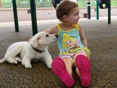 Toddler Born Without Feet Adopts Puppy Missing a Paw