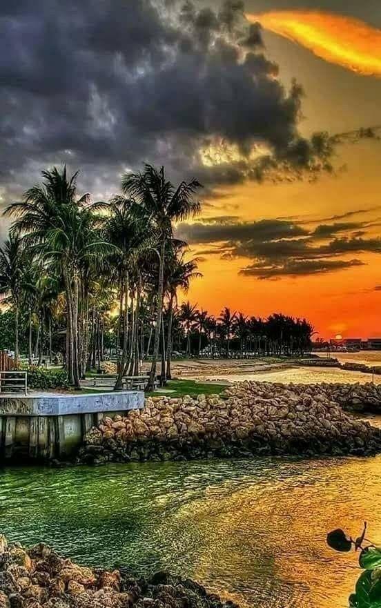أن لم تكن صدرا بأول جملة أو فاعلا للمجد في إسهاب إياك أن تبقي ضميرا غائبا أو لا محل له من الأعراب Beautiful Nature Sunset Nature Beautiful Landscapes