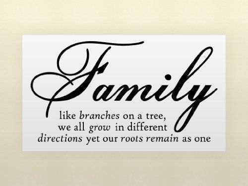 Family Like Branches On A Tree vinyl lettering wall sayings home art decor $2.99