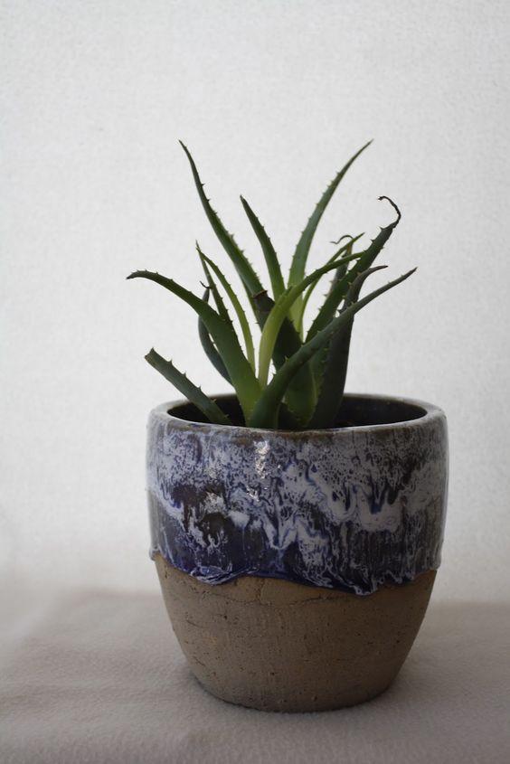 plant life; d.landy