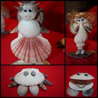 more sea shell animals