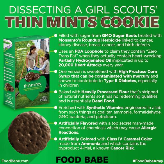 dissecting thin mints girl scout cookies it isn t pretty