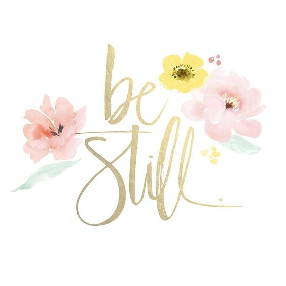 Help me to be still Lord; to turn off the busyness, the noise & all that distracts me from you, your love & your peace. help me to be okay with that which I may not get done or accomplished. teach me to quiet my soul & find rest.