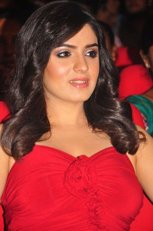 Lucky Sharma Looking Gorgeous in Red Dress at &-39-Paisa&-39- Movie Audio ...