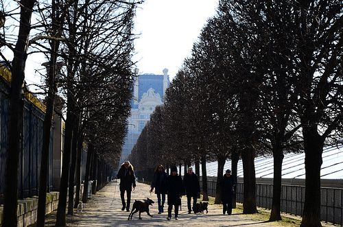 Jardin des Tuileries | Flickr - Photo Sharing!