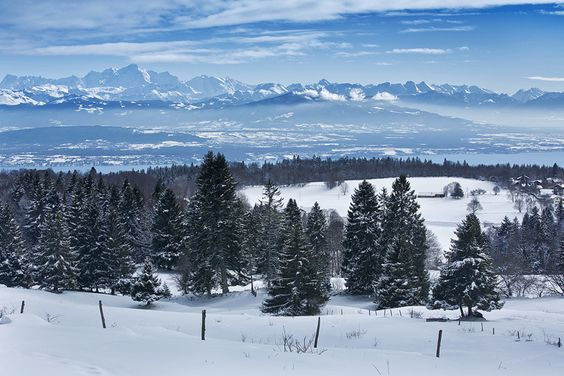 Winter Landscape - by Christopher Waddell