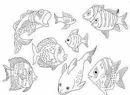 Bildergebnis für malvorlagen fische