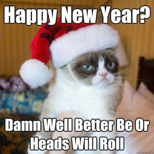 Funny New Year Wishes People Are So Worried About What They Eat Between Christmas And The New Year But They Grumpy Cat Humor Grumpy Cat Christmas Grumpy Cat