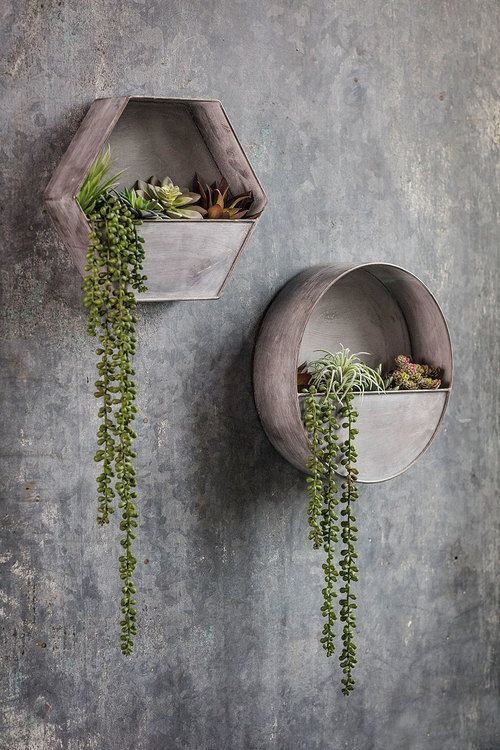 Hanging Plants Creative Ideas For Hanging Plants Indoors And Outdoors Indoor Outdoor Hanging Planter Ideas Han Garden Wall Decor Plant Decor Hanging Plants