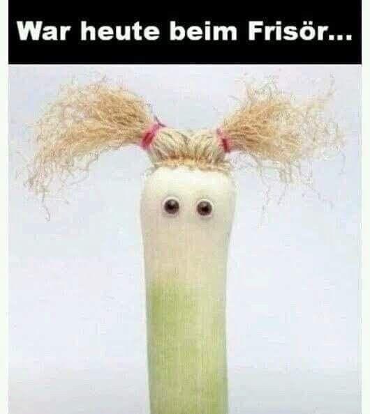 Meme Neue Frisur Spruche Leben Lustig Lustig Lustige Zitate Und Spruche
