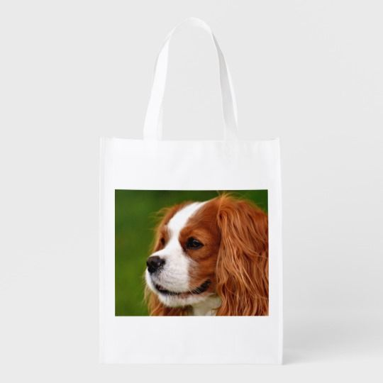 Create your own Tote Bag     Reusable grocery
