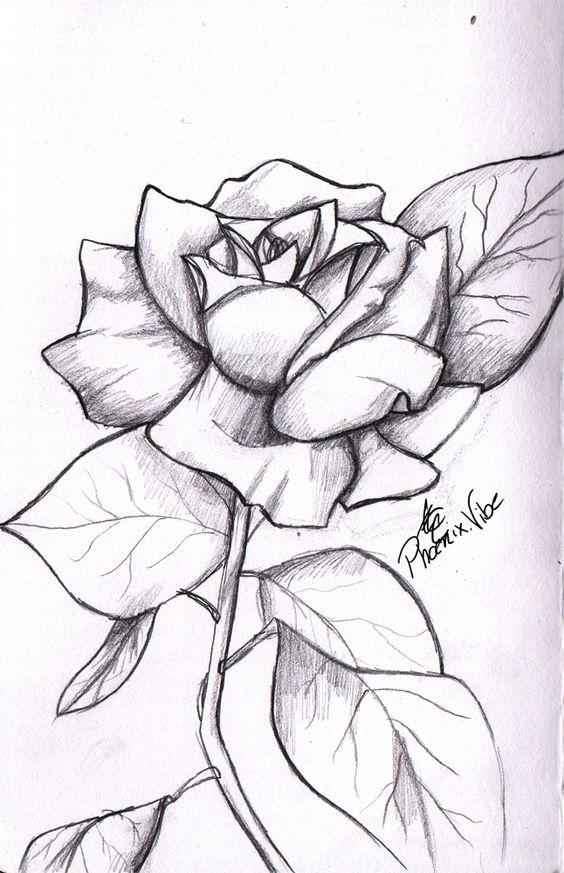 Rose Drawings In Pencil | simple rose from my sketchbook. Enjoy :3 | Tattoo Ideas | Pinterest ...