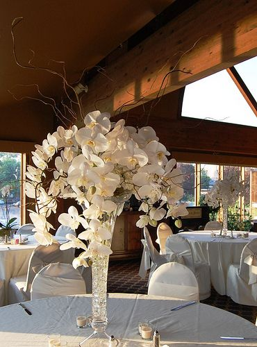 Orchid centerpieces with branches wedding pinterest