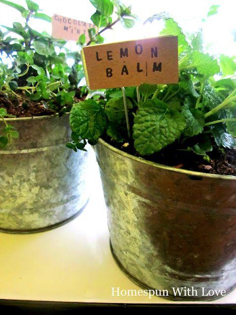 Homespun With Love: Kitchen Herb Garden
