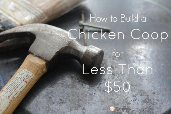 How to Build a Chicken Coop for Less Than $50 Has some good ideas for reusing materials but I wouldn't make that nesting box.
