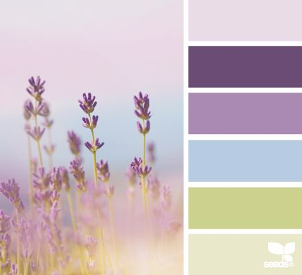 Mood Board Monday: August Design Collaboration - Lavender Hues