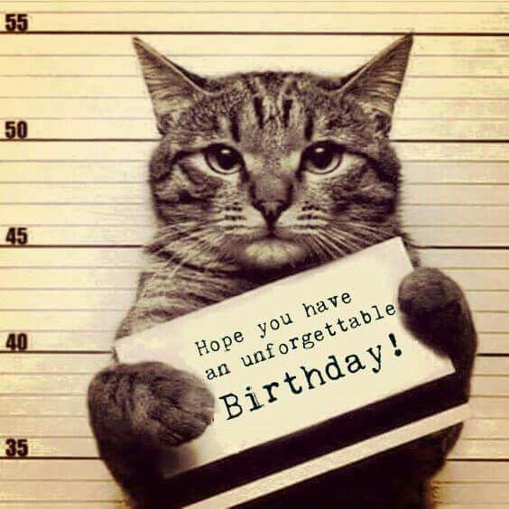 Geburtstag Bilder 49 Fur Mein Schatz Geburtstag Bilder