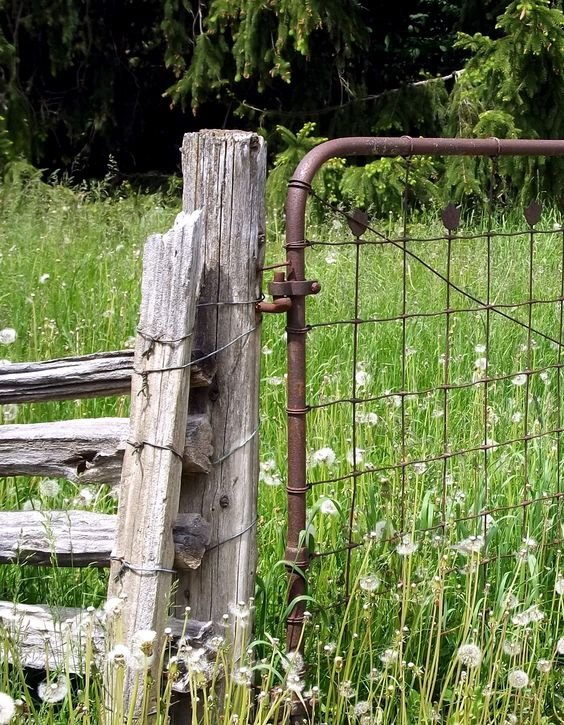 Rustic fence outdoor ideas and fence on pinterest for Rustic garden gate designs