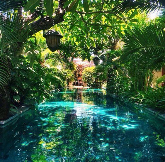 Lushness dream garden pinterest beautiful backyards for Tropical pool gardens