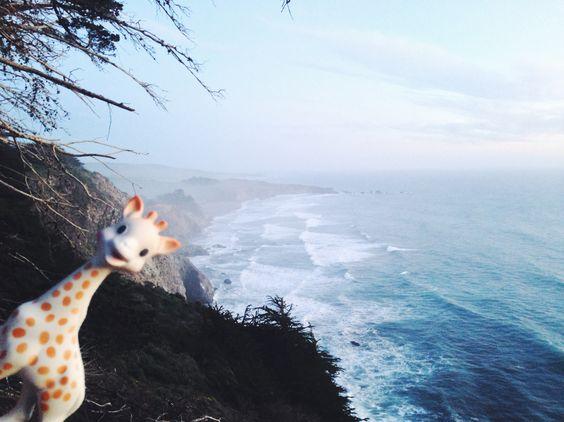 sophie la girafe en voyage