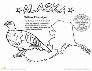 alaska state bird science colors and animals. Black Bedroom Furniture Sets. Home Design Ideas