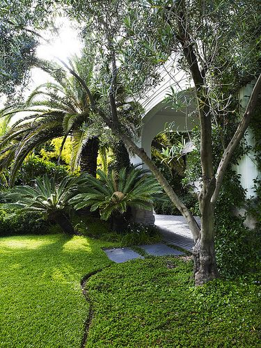 Design simple designs and i love on pinterest for Simple landscaping plants