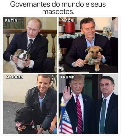 Pin De Juraci Paes Em Humor Politico Memes Engracados Frases