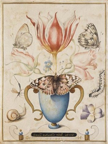 Still Life with Flowers, Insects and a Snail by Joris (George) Hoefnagel on artnet. Circle of Joris (George) Hoefnagel (Flemish, 1542–1601). watercolor, gouache and gold on vellum. 16.5 x 12.5 cm. (6.5 x 4.9 in.)
