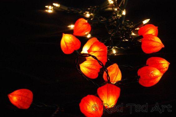 Phylasis craft fairy lights. Beautiful Fall!