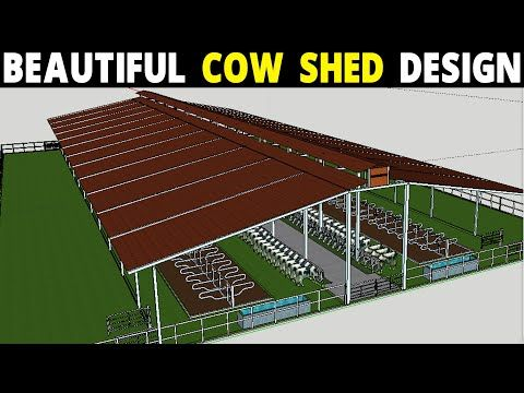Cow Shed Plans And Design Dairy Farm Design Youtube Cow Shed Design Cow Shed Farm Shed