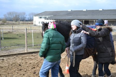 """Spannende Exkursion: Unsere Azubis der Ausbildung """"Erzieher/Erzieherin"""" waren beim pferdegestützten Training!  Wieso und warum, das erfahrt Ihr in diesem Artikel: http://tinyurl.com/PferdegestuetztesTraining"""