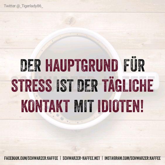 Der Hauptgrund für Stress ist der tägliche Kontakt mit Idioten!