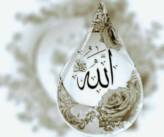 10 Allah C C Ve Hz Muhammed Sav Yazili Profil Resmi Diniresimler Com Allah Resimler Tablolar