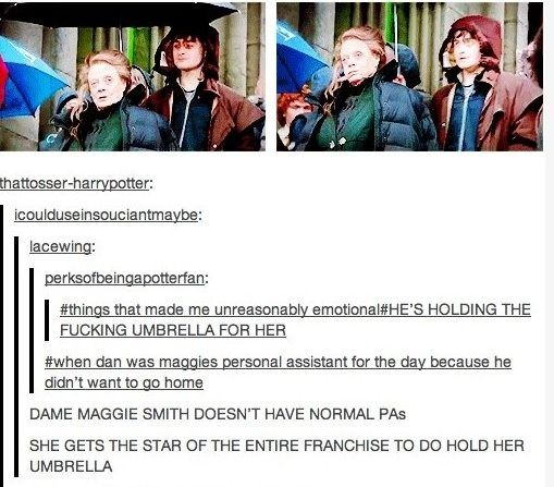 Harry Potter Tumblr Posts - Imgur Not sure of context but love!
