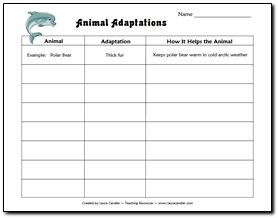 adaptations worksheet worksheets releaseboard free printable worksheets and activities. Black Bedroom Furniture Sets. Home Design Ideas