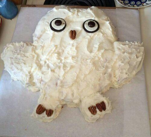 The owl cake I made for my granddaughter's birthday inspired by many pins. Oreo cookie with Junior Mints for eyes from one pin, a pecan nose from another, and I adapted the pattern from another.
