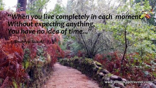 I love this Zen saying that I added to my photo on the Camino to Finsterre Spain!