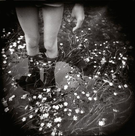 http://www.danaucante-photography.com