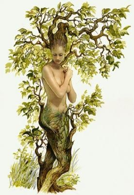 ~She was the seedling of creation..forging and shaping into an vision of beauty..entwined and woven within strong arms and emerald leaves..she is the forest nymph of love and life....: