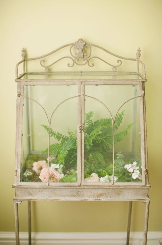 antique terrarium- I would love to do this for my snakes