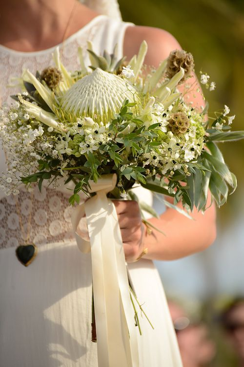 White king protea rustic bouquet. PhotoShoots Vallarta