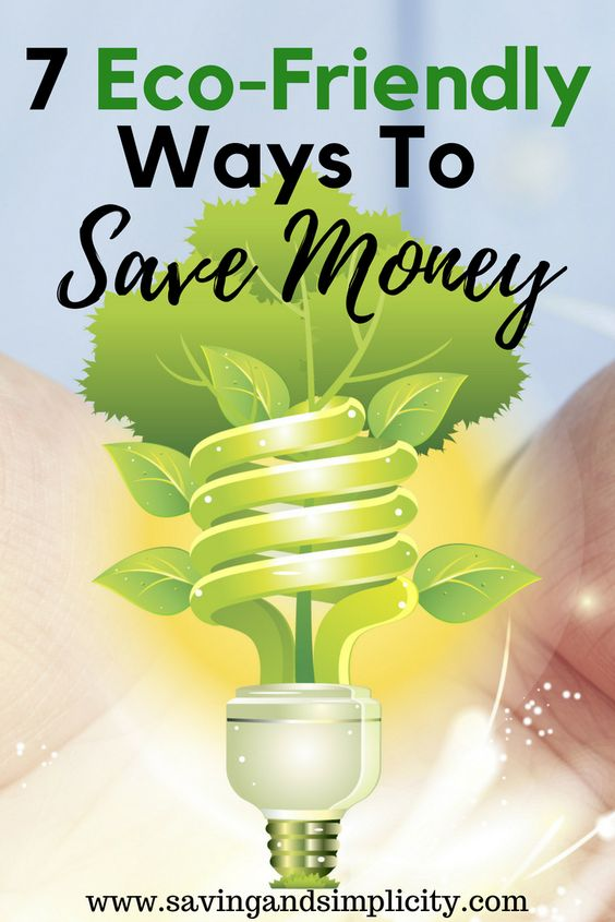 Eco-friendly living. 7 green living tips to help you save more money. Learn how to choose healthier options for your family, your household and your planet all while saving tons of money. Going green is easier than you think. Learn how today. #greenliving #savingmoney #frugal #ecofriendly #home