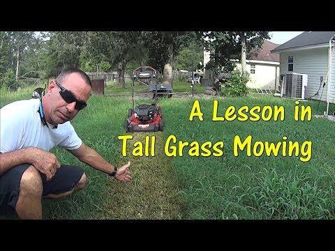 Youtube Mowing Tall Grass Grass