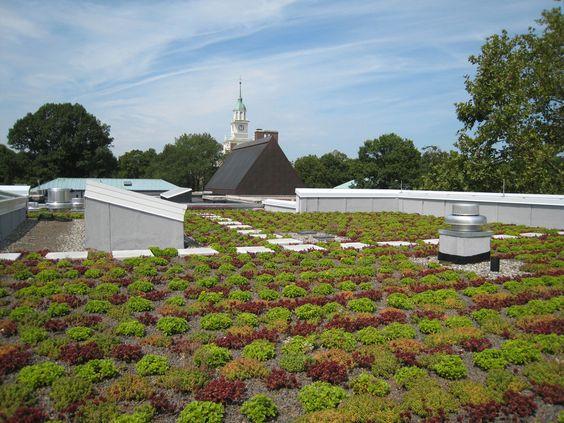 Institute for Advanced Study, Princeton, NJ