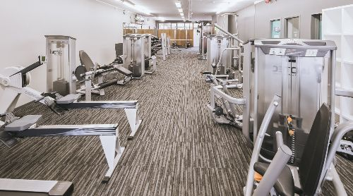 Milford 24hr Fitness Programmes To Fit Your Goals Milford Workout Programs 24 Hr Fitness