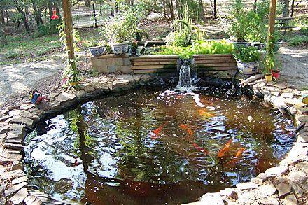 Aquaponic pond design google search aquaponics ideas for Aquaponics fish pond